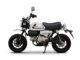 Monkey 70's Ride